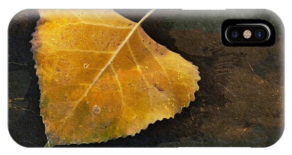 Yellow Autumn Leaf IPhone Case