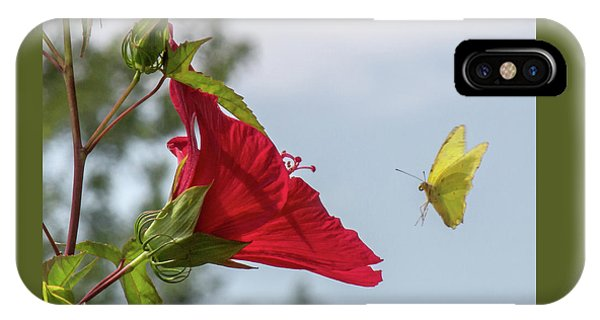 Yellow Butterfly Art IPhone Case