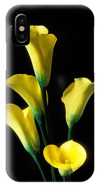 Lily iPhone X Case - Yellow Calla Lilies  by Garry Gay