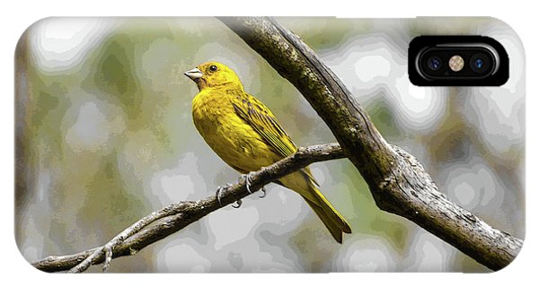 Yellow Canary IPhone Case