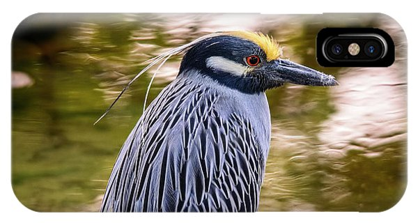IPhone Case featuring the photograph Yellow-crowned Night-heron by Steven Sparks