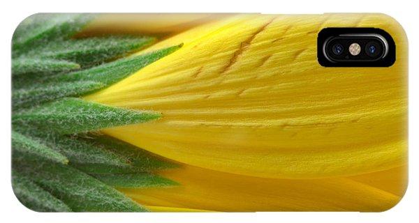 Yellow Daisy Macro IPhone Case