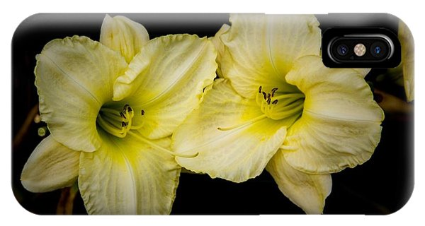Yellow Day Lilies IPhone Case
