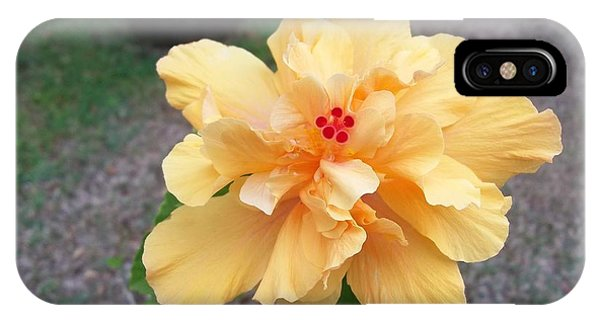 Yellow Double Hibiscus IPhone Case