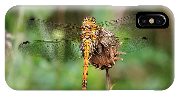 yellow Dragonfly Phone Case by Pierre Leclerc Photography