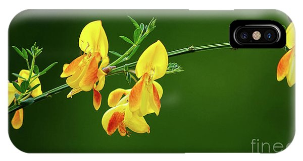 Yellow Fever IPhone Case