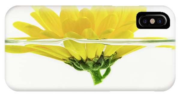 Yellow Flower Floating In Water IPhone Case