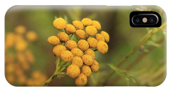 Yellow Garden Tansey IPhone Case