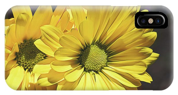 Yellow Gerbera IPhone Case