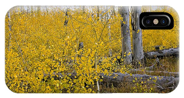Yellow In Grand Teton IPhone Case