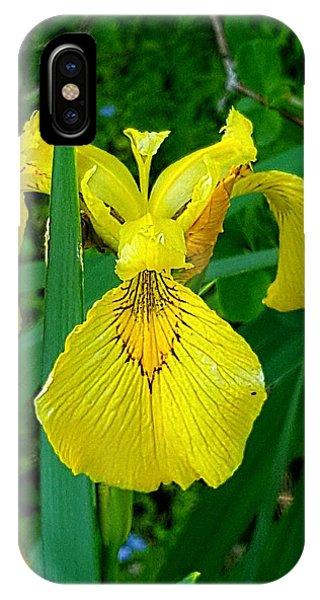 Yellow Iris IPhone Case