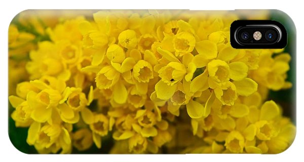 Yellow Is The Joy Of Spring IPhone Case