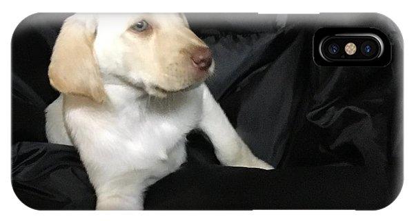 Yellow Lab Puppy Sadie IPhone Case