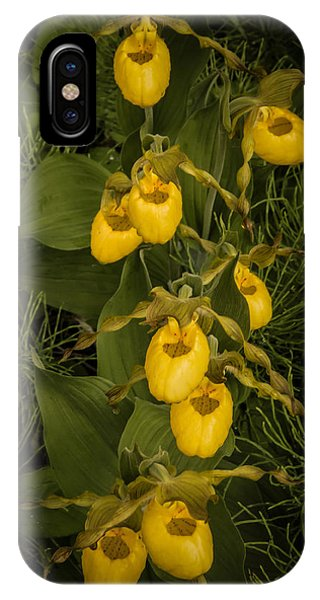 Yellow Lady Slippers IPhone Case