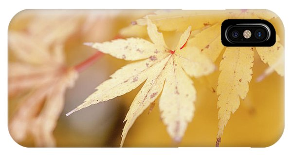 Yellow Leaf With Red Veins IPhone Case