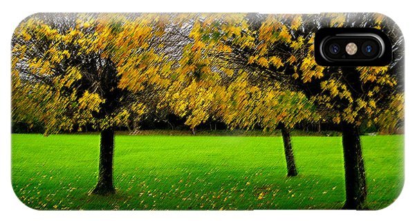 Yellow Leaves At Muckross Gardens Killarney IPhone Case