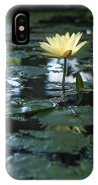 Yellow Lilly Tranquility IPhone Case