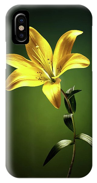 Lilly iPhone Case - Yellow Lilly With Stem by Johan Swanepoel
