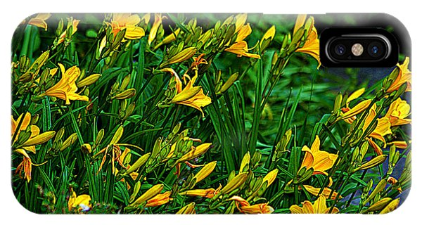 Yellow Lily Flowers IPhone Case