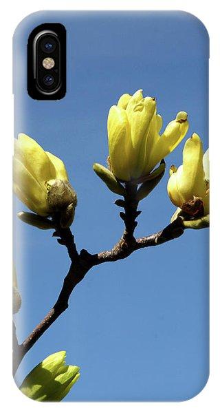 Yellow Magnolia IPhone Case