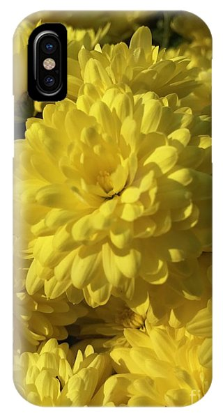 Yellow Mums IPhone Case