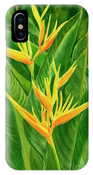 Parakeet iPhone Case - Yellow Orange Heliconia With Leaves by Sharon Freeman