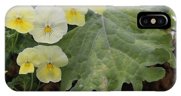 Yellow Pansies IPhone Case