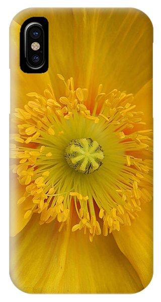 Yellow Poppy Flower Center IPhone Case