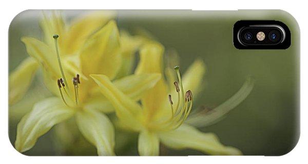 Yellow Rhodo IPhone Case