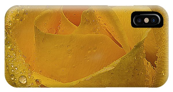 Yellow Rose And Dew Phone Case by Marti Buckely