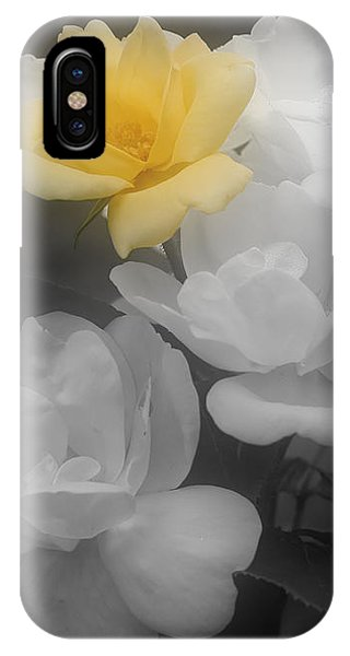 Yellow Rose Cluster Partial Color IPhone Case