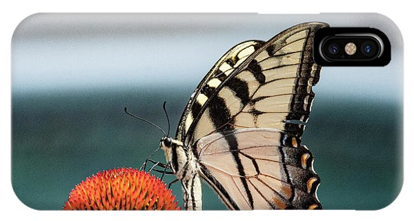 Yellow Swallowtail II IPhone Case