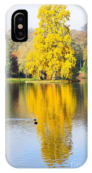 Yellow Tree Reflection IPhone Case