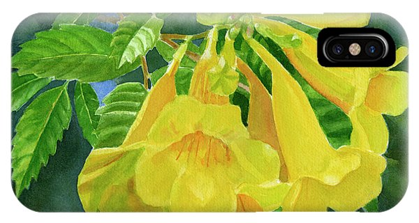 Yellow Trumpet iPhone Case - Yellow Trumpet Flowers With Dark Background by Sharon Freeman