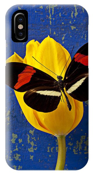 Floral iPhone Case - Yellow Tulip With Orange And Black Butterfly by Garry Gay