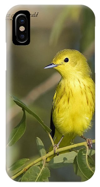 Yellow Warbler IPhone Case