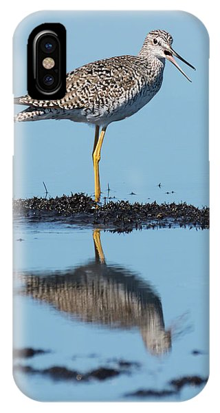 Yellowlegs Song IPhone Case