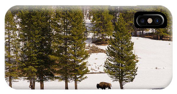 Yellowstone Buffalo IPhone Case