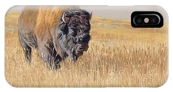 Yellowstone iPhone Case - Yellowstone King by Aaron Blaise