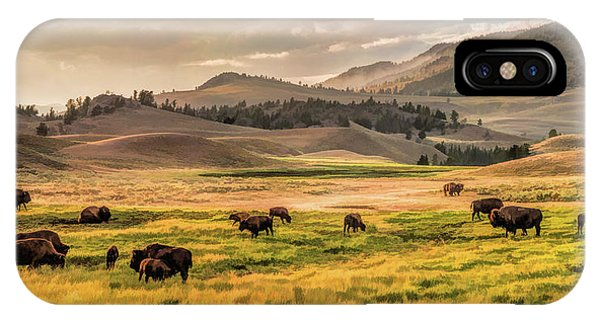 Yellowstone National Park iPhone Case - Yellowstone National Park Lamar Valley Bison Grazing by Christopher Arndt