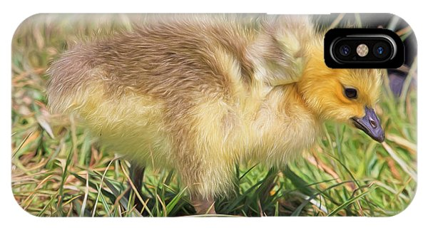 Goslings iPhone Case - Yes I Do Have Wings by Donna Kennedy