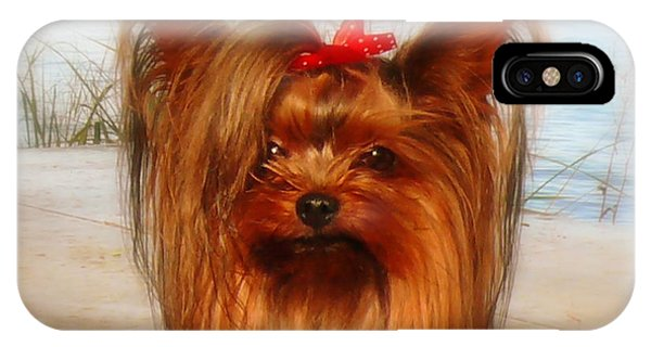 Yorkie Princess IPhone Case