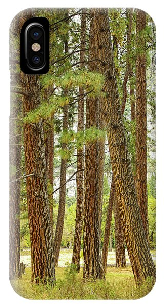 IPhone Case featuring the photograph Yosemite by Jim Mathis