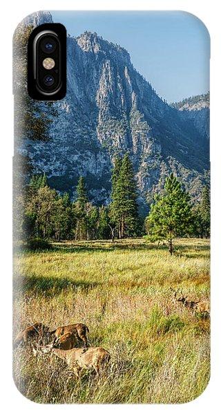 Yosemite Valley At Yosemite National Park IPhone Case