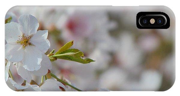 Yoshino Blooms IPhone Case