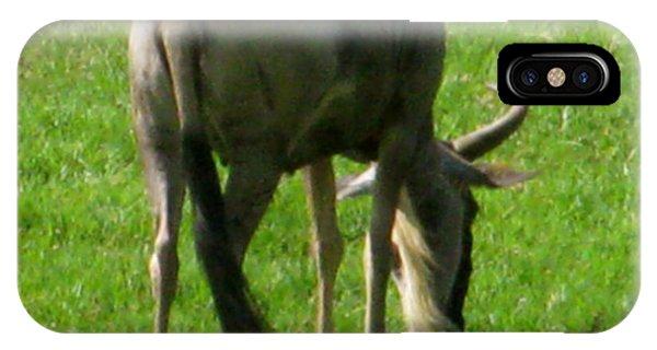 Wildlife Er iPhone Case - You'er Such A Wildebeest by Debra     Vatalaro