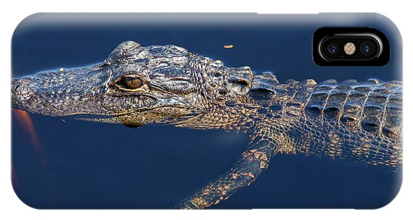 Young Gator 1 IPhone Case