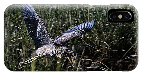 IPhone Case featuring the photograph Young Heron Takes Flight by William Selander