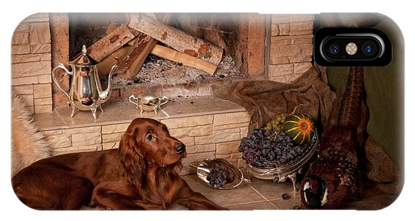 iPhone Case - Young Irish Setter by Tanya Kozlovsky