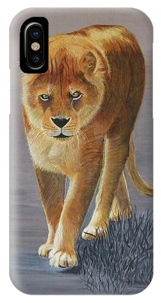 Young Male Lion IPhone Case